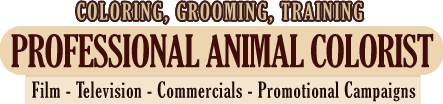 Coloring, Grooming, Training - Professional Animal Colorist - Film, Television, Commercials, Promotional Campaigns